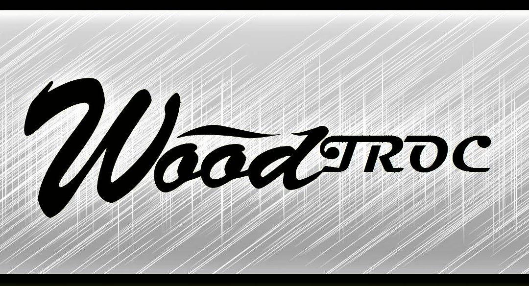 WOODTROC – Le dépôt vente de matériel musical chez Wood Stock Guitares : c'est parti !